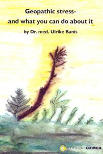 Banis libro in inglese